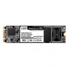 SSD накопичувач Team MS30 256GB M.2 2280 SATAIII TLC (TM8PS7256G0C101)